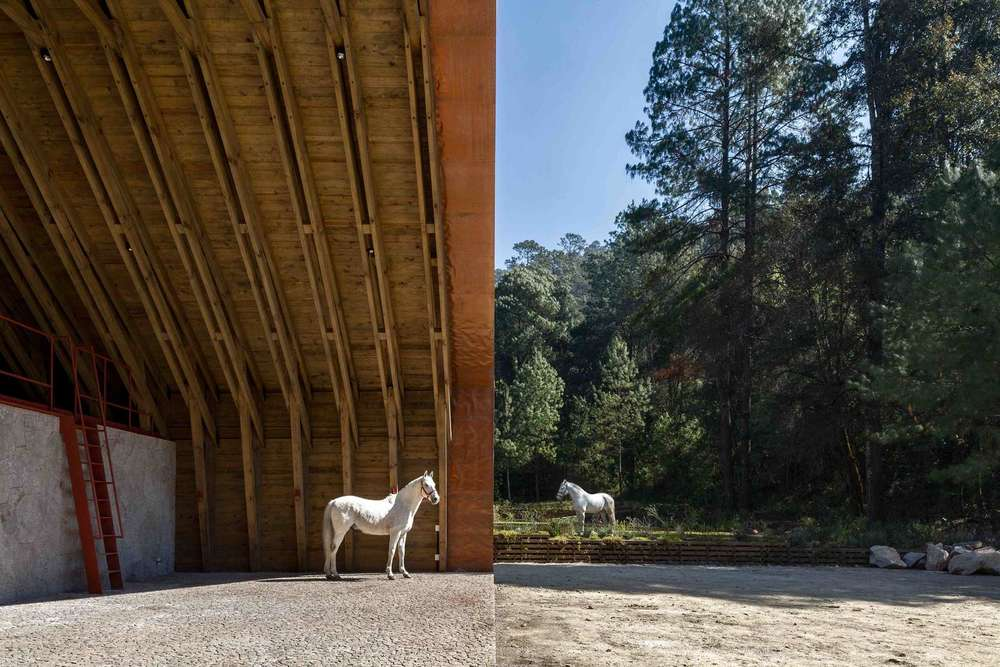the-tree-mag-equestrian-project-by-cc-arquitectos-90.jpg