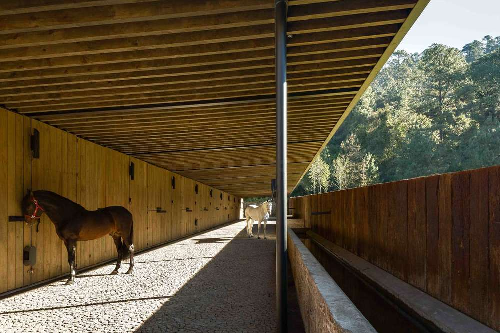 the-tree-mag-equestrian-project-by-cc-arquitectos-110.jpg