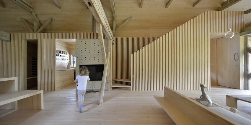 the-tree-mag-alpine-barn-apartment-by-ofis-arhitekti-150.JPG