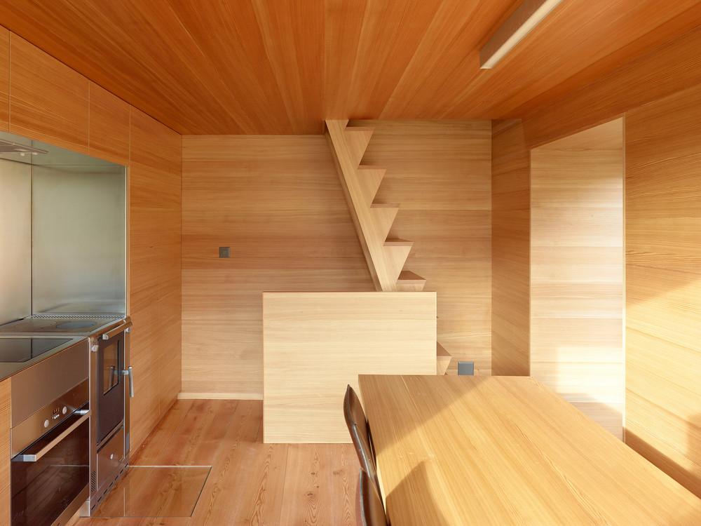 the-tree-mag-boisset-house-by-savioz-fabrizzi-80.jpg