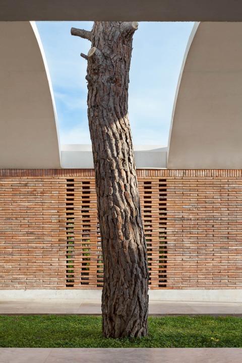 the-tree-mag-iv-house-by-mesura-130.jpg