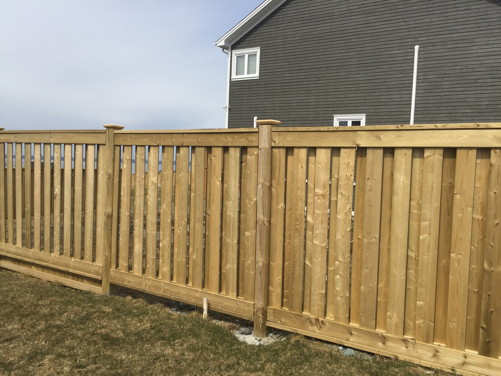 New fence to provide privacy and shelter from the wind.