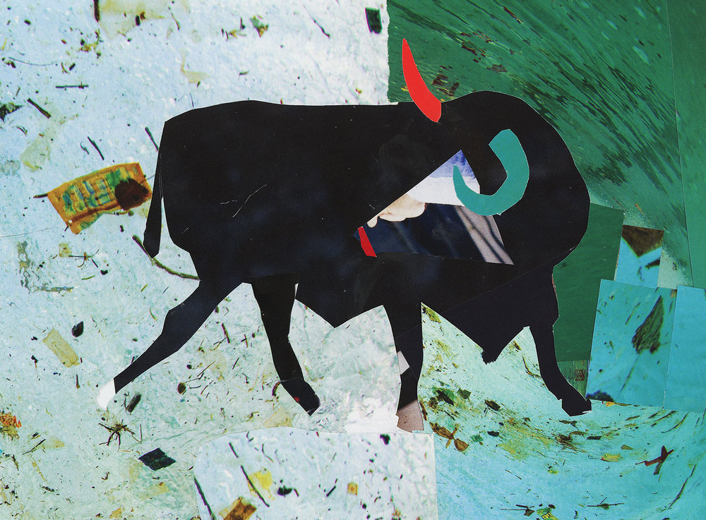 Turquoise Bull for Postcard.jpg