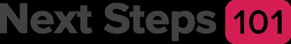 NS101 Logo.png