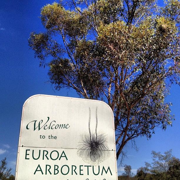 Euroa Arboretum