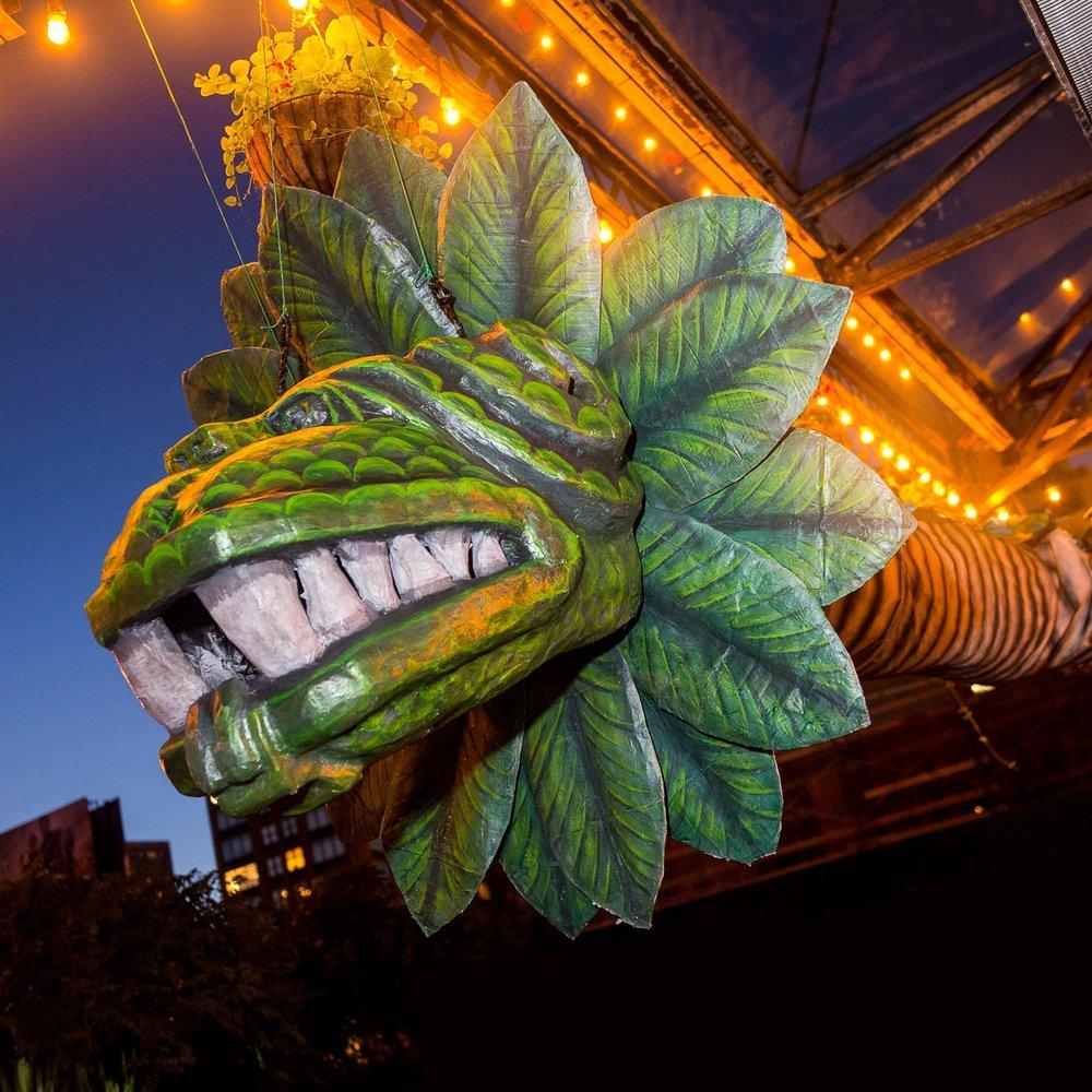 Arte Agave NY, SA, DC - Experience it