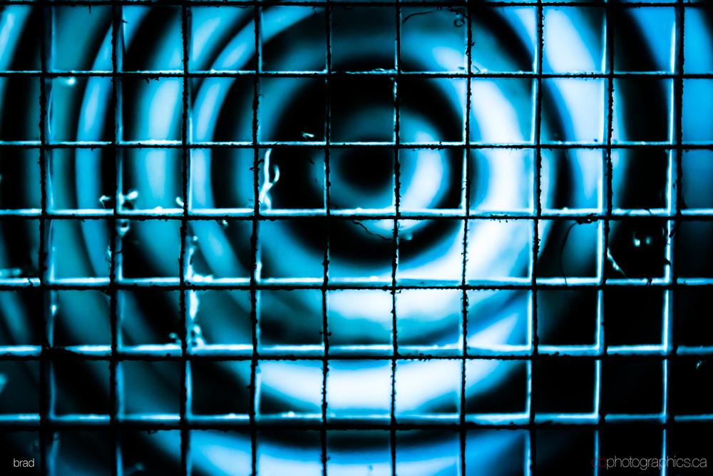 365-40-003-big-db.jpg