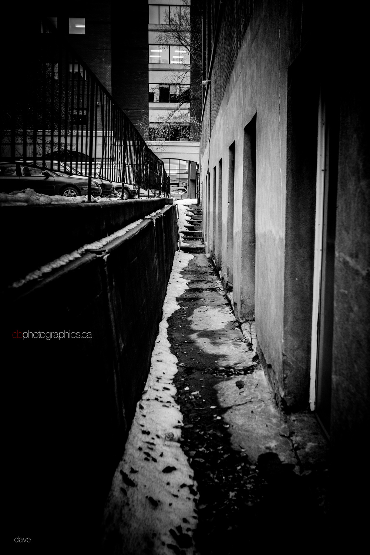 365 - dbphotographics - dave - 02 12 IMG_3012.jpg