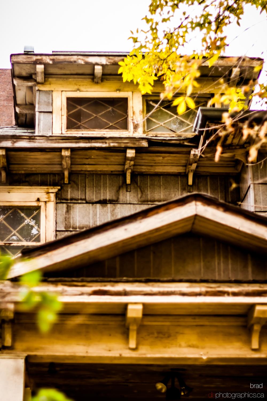365-october-015-lr-db.jpg