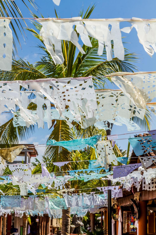 Ixtapa-2015263-lr-blog.jpg