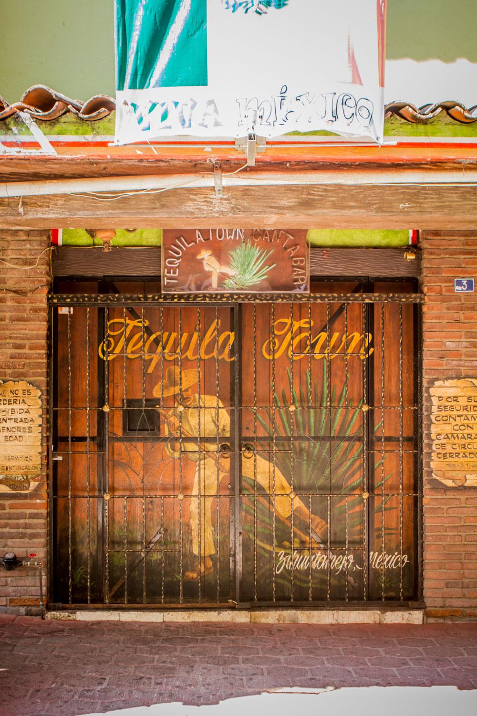 Ixtapa-2015266-lr-blog.jpg