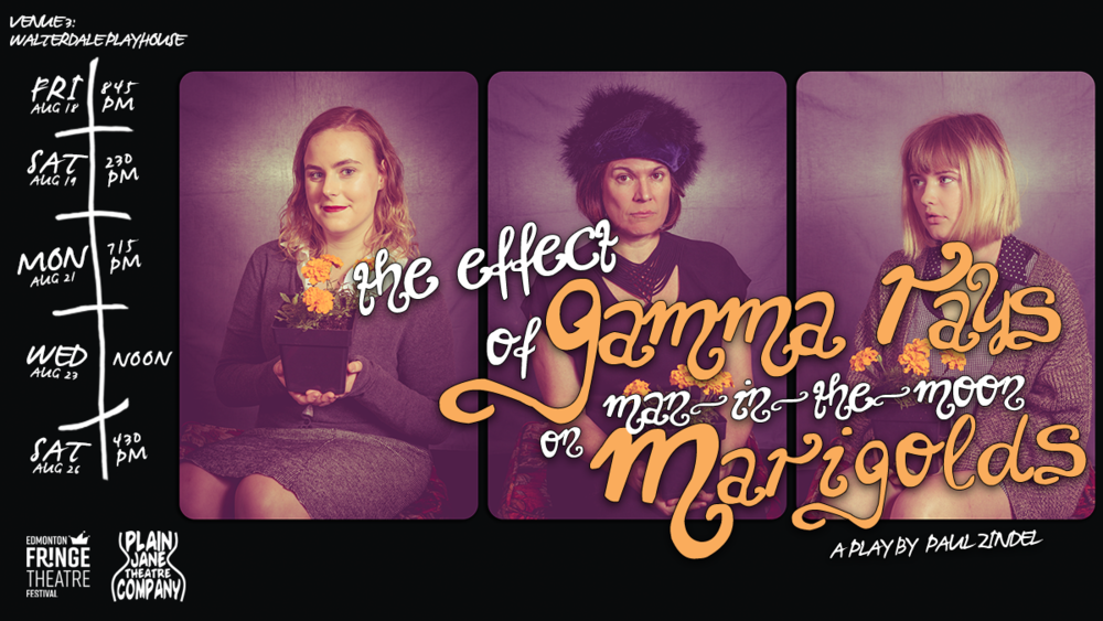 Marigolds - Facebook Cover 2.png