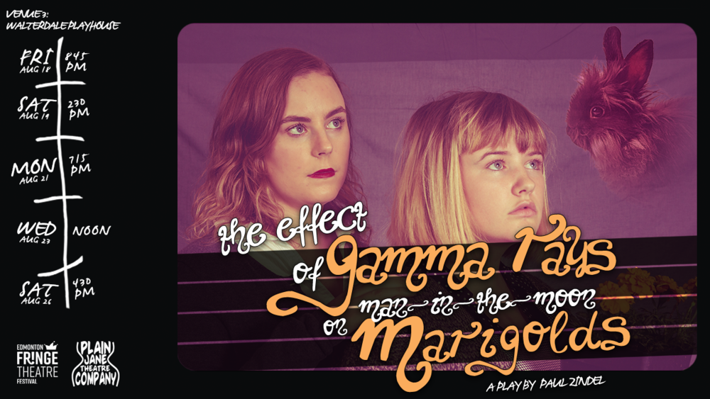 Marigolds - Facebook Cover 4.png