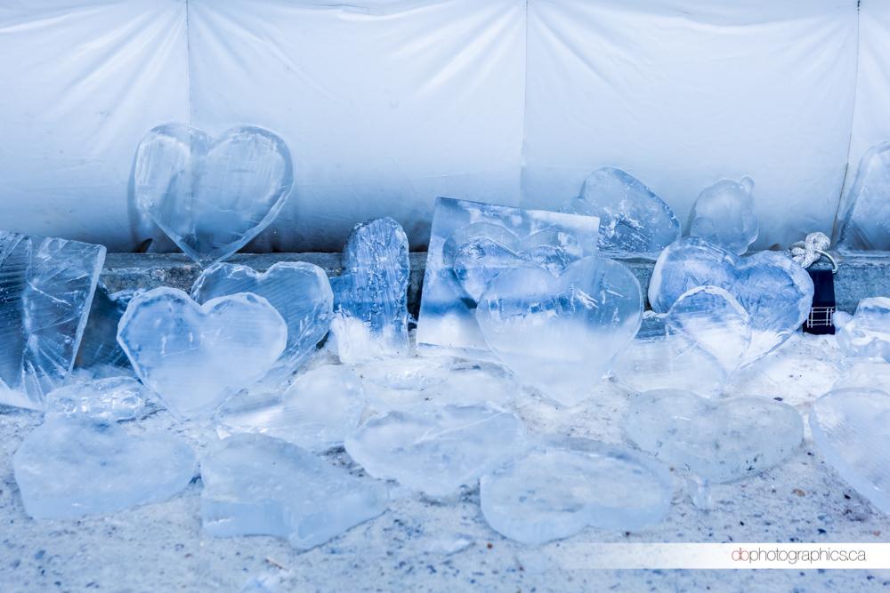 iceonwhyte-3-68-db-web.jpg