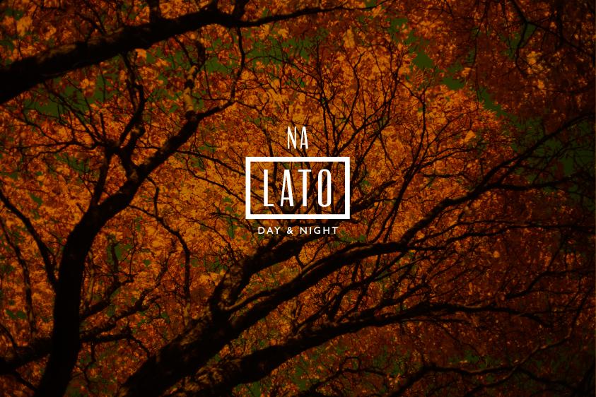 Na-Lato-z-tlem-z-kuchni---Drzewo1.jpg