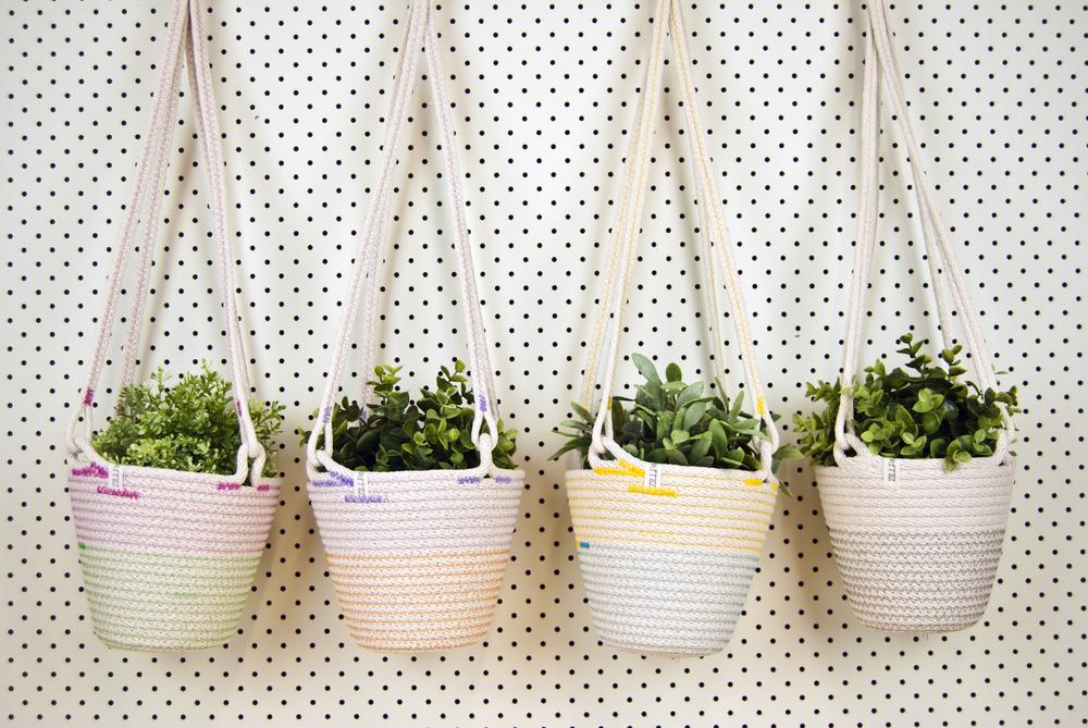 Plant Hangers ALL.jpg