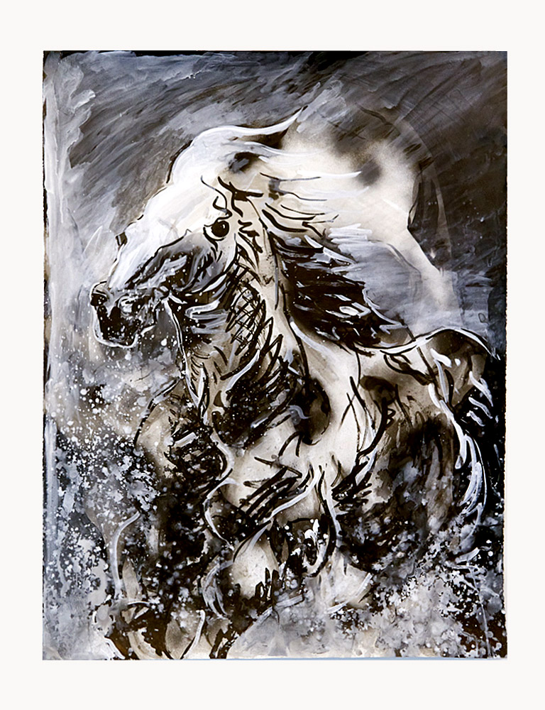 Horse Spray     Ink and oil on paper, 2012  2012