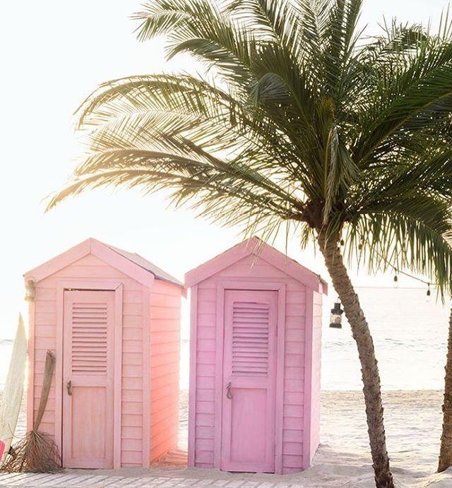Happy weekend Sunshine🌴✨ #beach #life #weekend #sun #saltyair #palmtrees #sandyfeet #happy #goodvibes