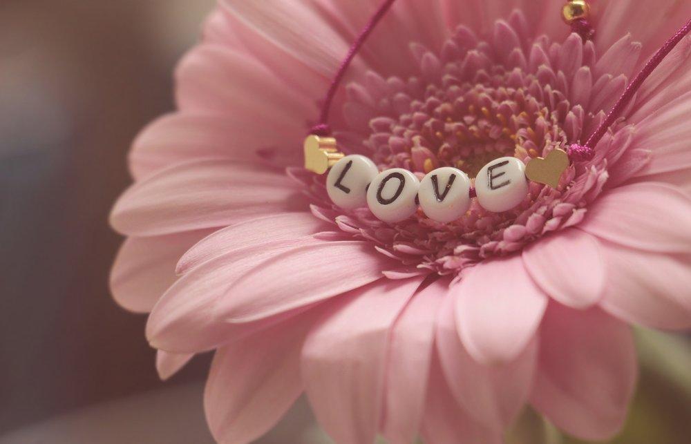 love-3388622_1920.jpg