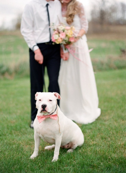 Super cute way to incorporate your buddy into your big day!