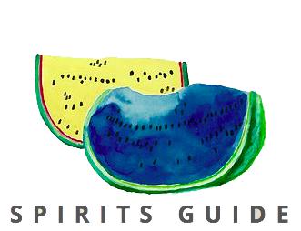 spiritguidelogo3.png