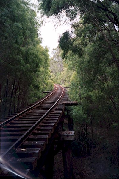 scenic-view-of-railroad-trestle-in-western-australia