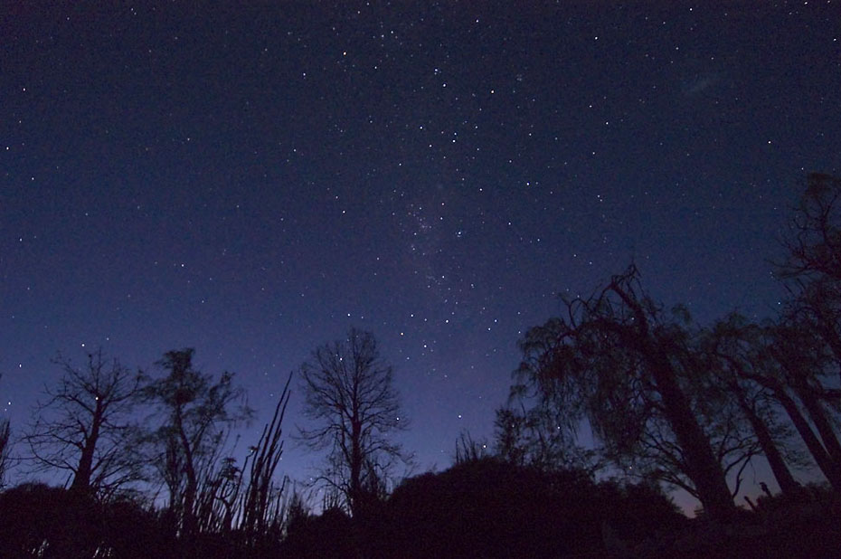 4233-night-sky-at-25-degree