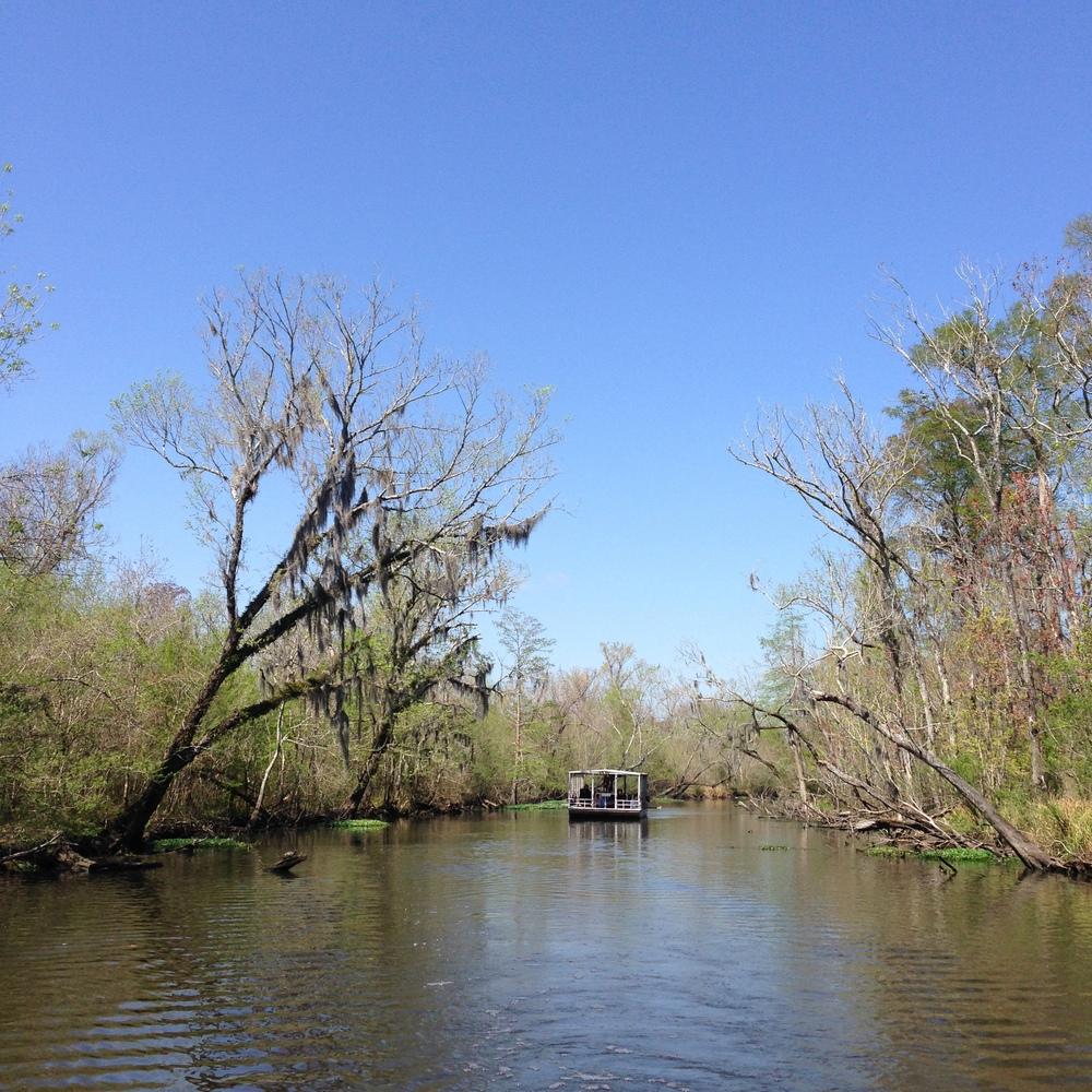 KateAchille-NewOrleans-Swamp-3.JPG