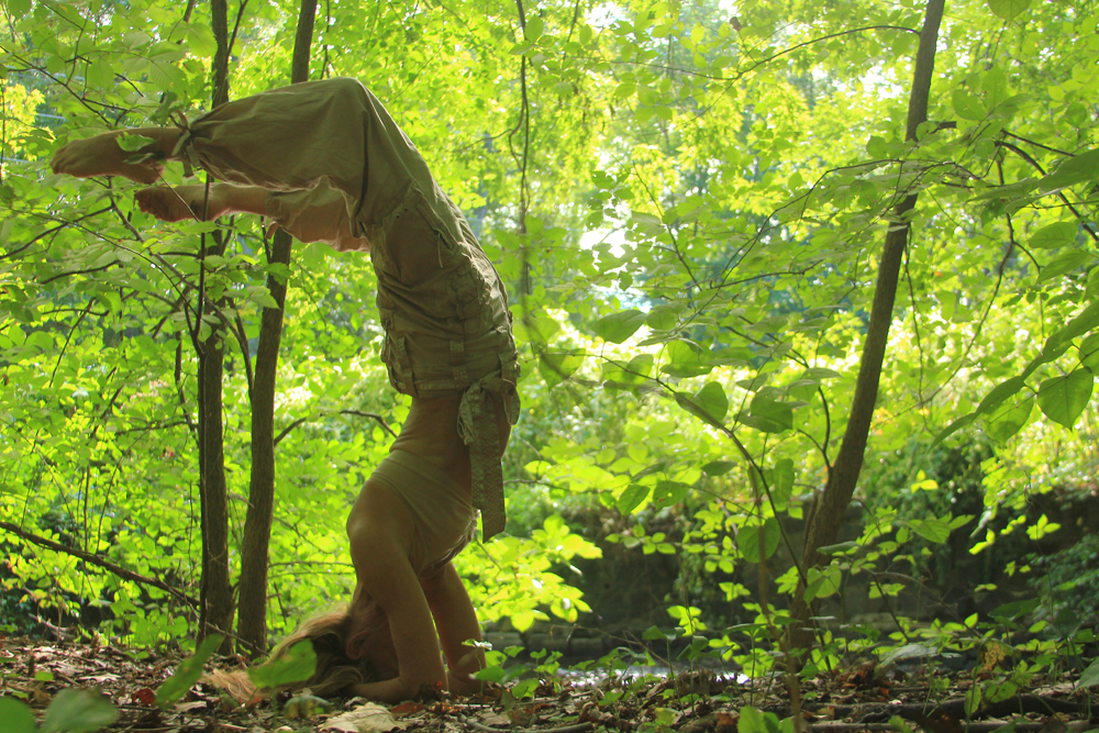 Forest, Ho-Ho-Kus Brook NJ. Photo by Deborah Michaels