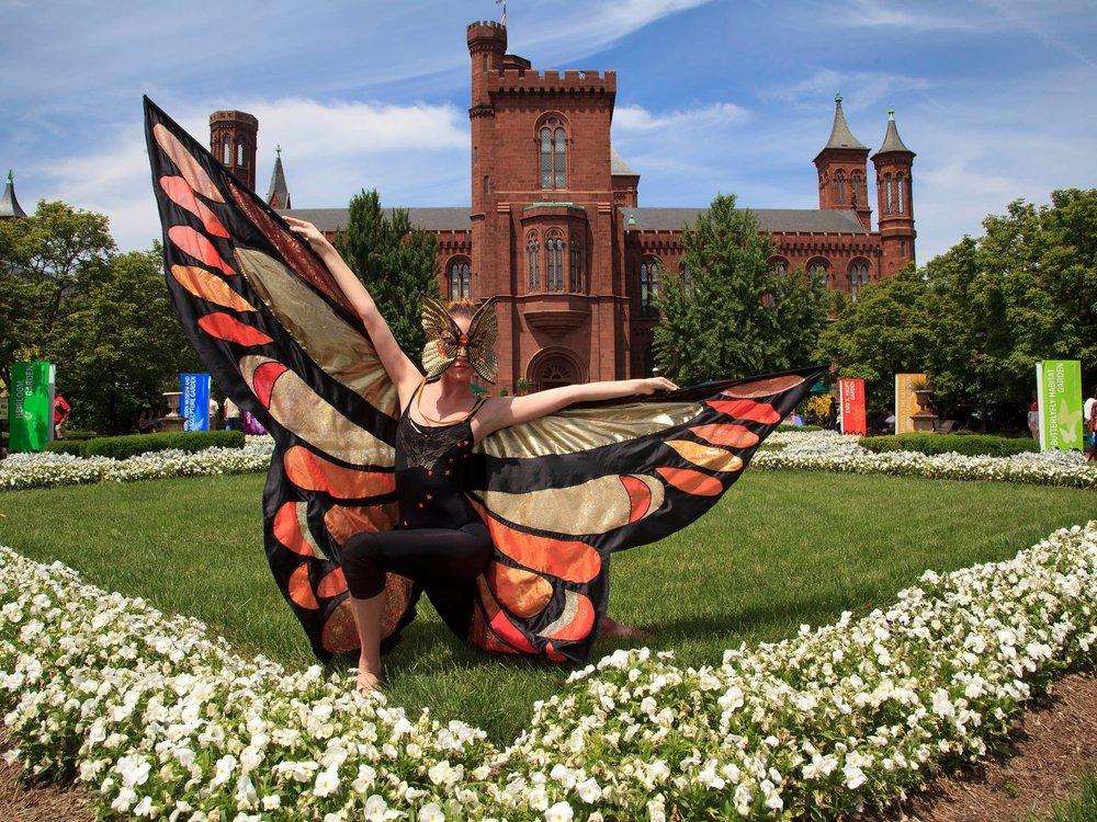 Smithsonian Institute Enid Haupt Garden, Washington DC