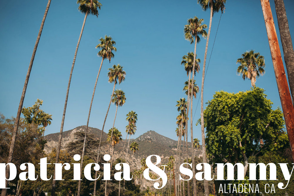 Feminist Wedding Photography Carly Romeo Photography Richmond VA Destination Altadena California Palm Trees