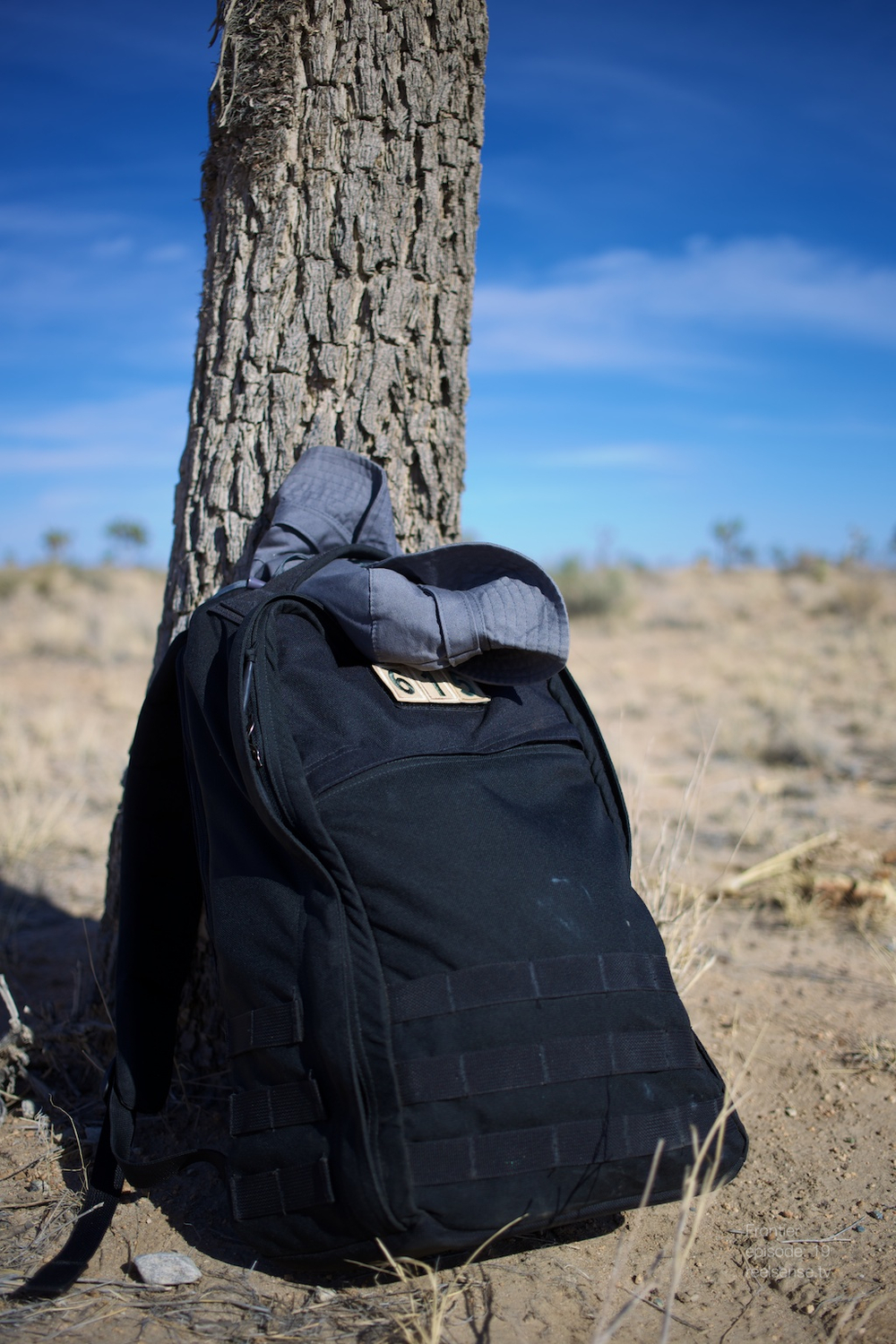 Joshua Tree - GORUCK against a Joshua tree