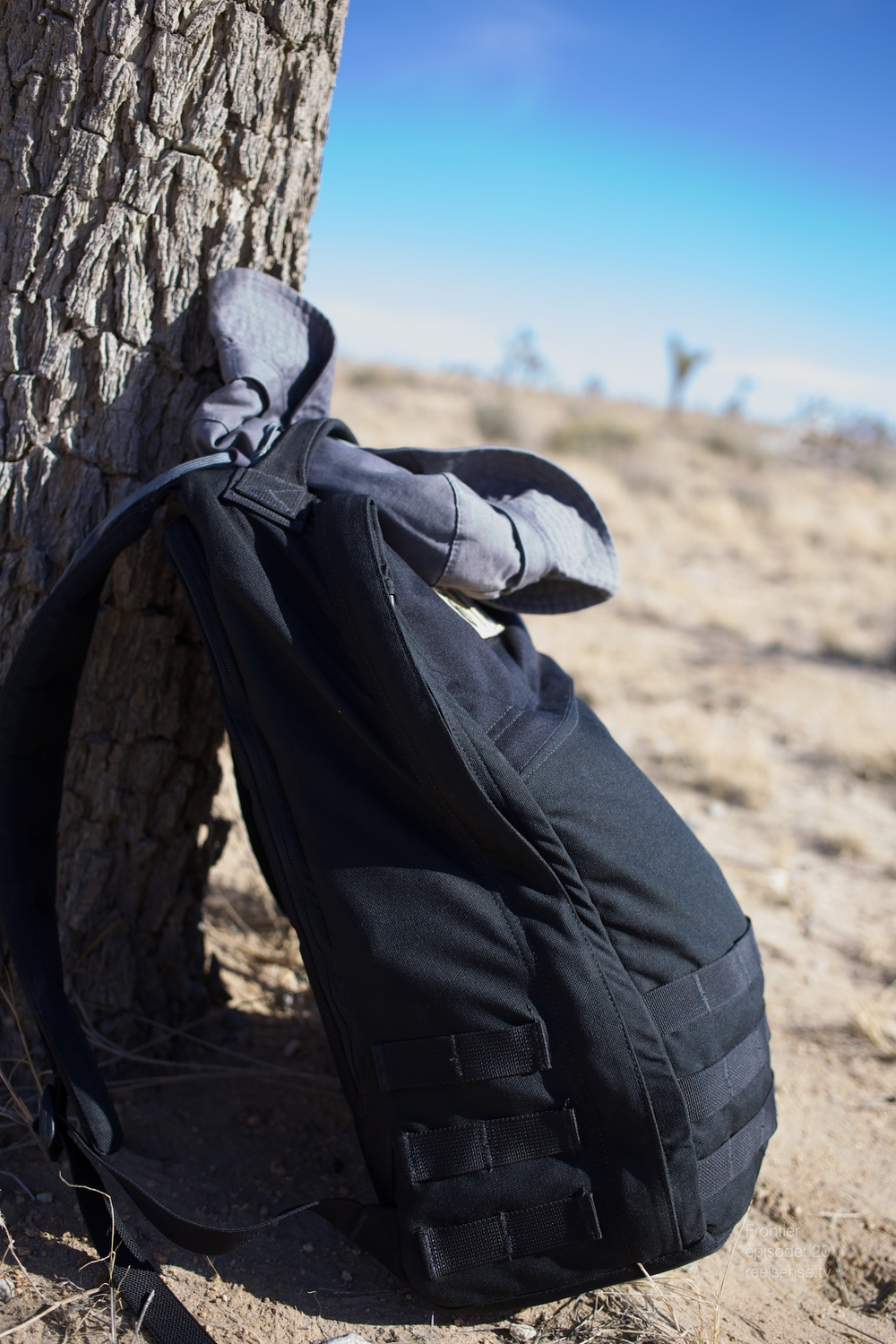 Joshua Tree - GORUCK GR1 backpack leaning against a Joshua Tree