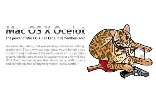 Archer loves Ocelots
