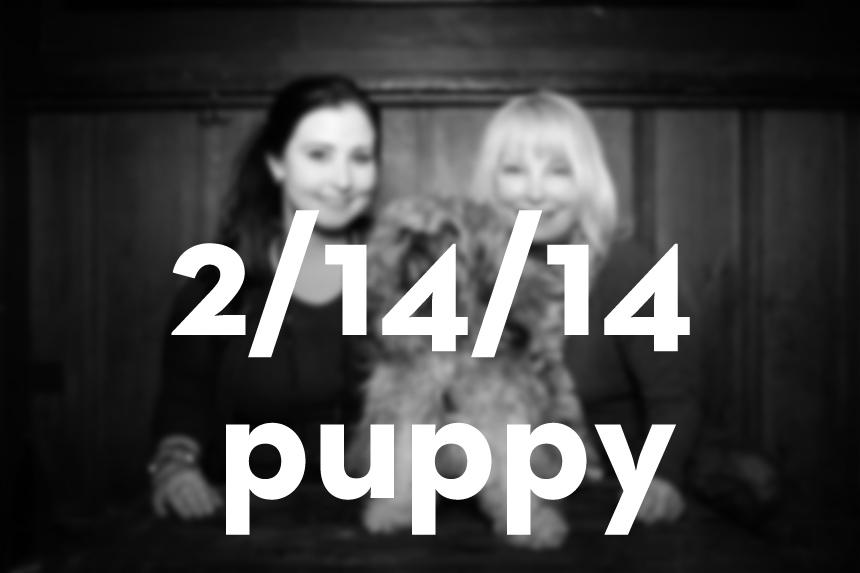 02_14_14_puppy.jpg