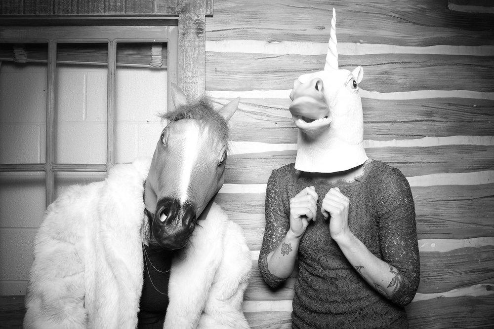 Horse costumes!