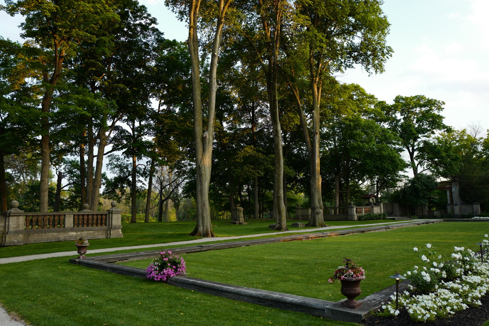 Beautiful trees and flower garden in the back of the Armour House.