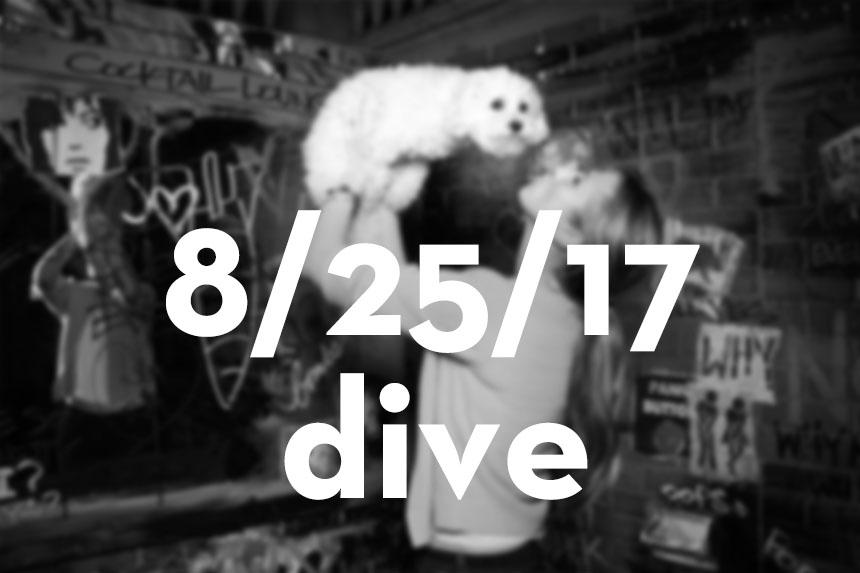 082517_dive.jpg