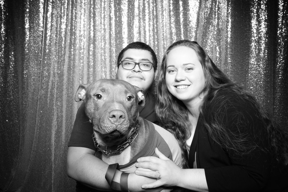 Dog_Friendly_Photo_Booth_Chicago_13.jpg