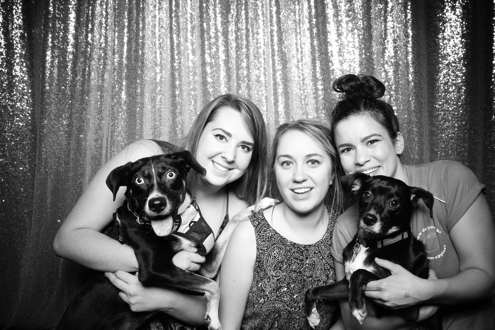 Dog_Friendly_Photo_Booth_Chicago_19.jpg