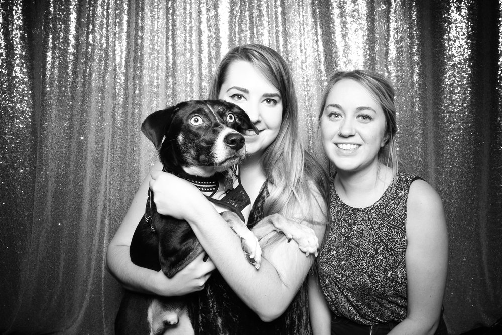 Dog_Friendly_Photo_Booth_Chicago_18.jpg
