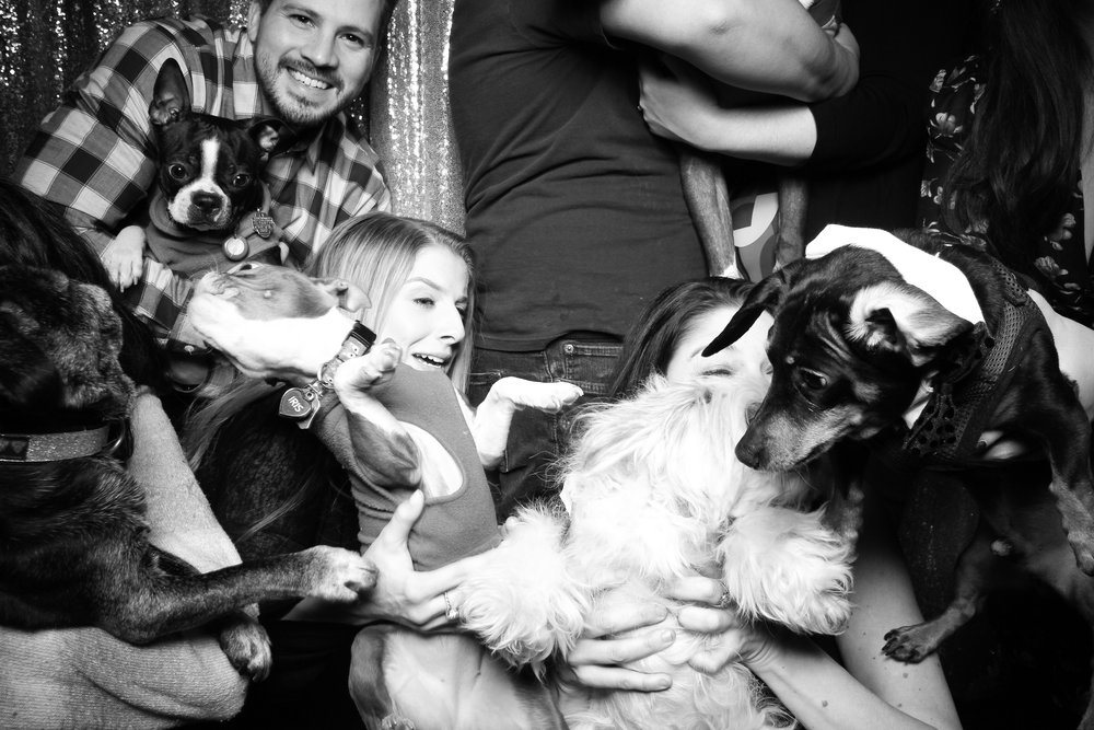 Dog_Friendly_Photo_Booth_Chicago_25.jpg