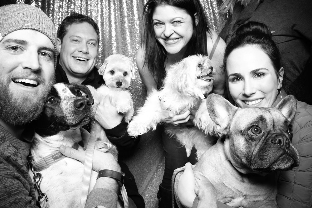 Dog_Friendly_Photo_Booth_Chicago_27.jpg