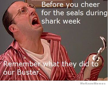 before-you-cheer-for-the-seals-this-shark-week.jpg