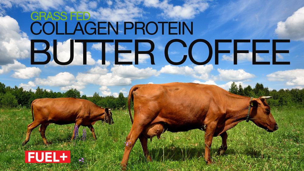 Collagen-Protein.jpg