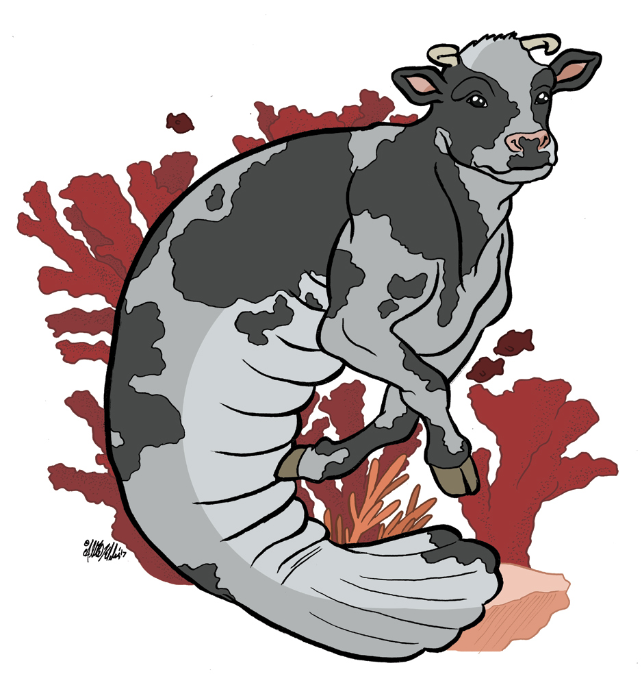 One of the most interesting commissions I've taken to date; half-cow, half-manatee (a twist on the mythological hippocampus).