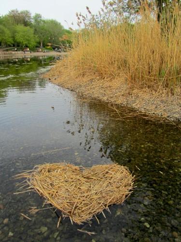 dried-reeds-heart-375x500.jpg