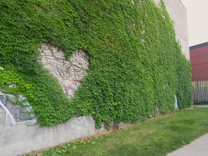 01_viny-heart-666x500.jpg