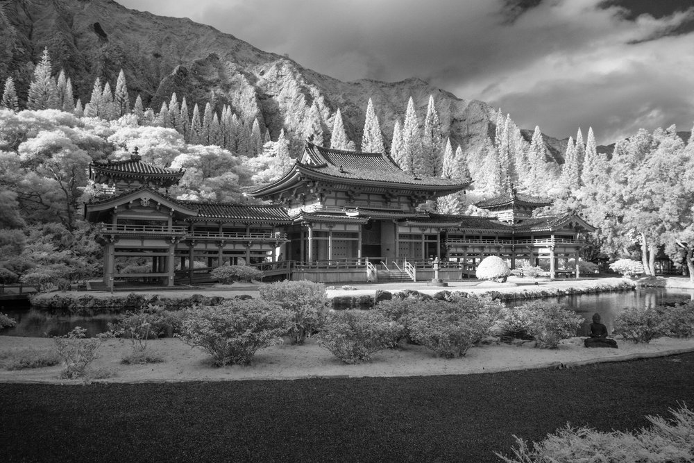 Aaron Sheldon - Byodo-In Temple.jpg