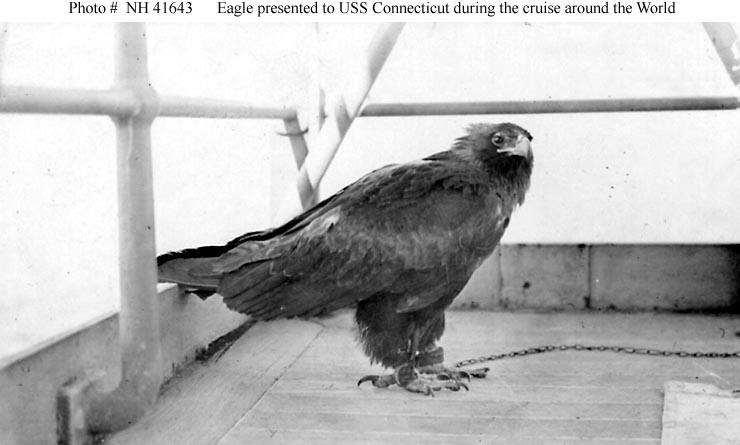 Eagle presented to USS Connecticut during the Great White Fleet's world cruise, circa 1908.